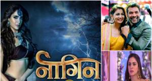 BARC ratings out. Naagin proclaims the throne