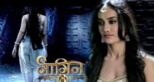 Kudos to Colors TV Naagin 3 for staying put on the top in BARC ratings