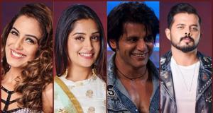 Karanvir Bohra & Dipika Kakkar earning popularity on Colors TV show Bigg Boss 12