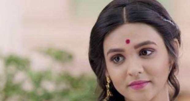 Barrister Babu Upcoming Story: Saudamini to fall prey to Anirudh's masterplan