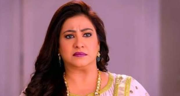 Guddan Tumse Na Ho Payega Twist: Pushpa blames Guddan for Agastya's condition