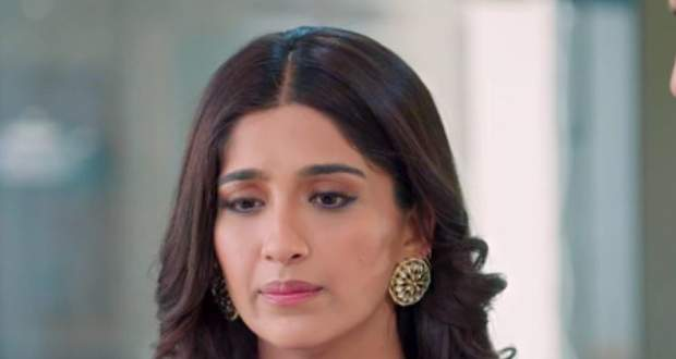 Choti Sardarni 20th May 2021 Written Update: Meher plans to find out the truth